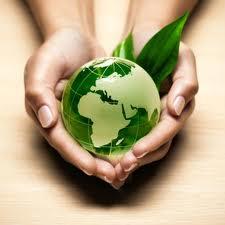 Bahan Bakar Nabati akan selamatkan bumi.