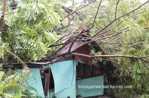 Cuaca Buruk, pohon tumbang rusak rumah warga di Kelurahan pateten Tiga (ardan gala)