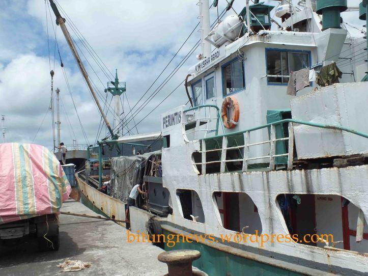 Kapal perintis KM Usaha Abadi, pemuat Kayu Illegal. (ardan)
