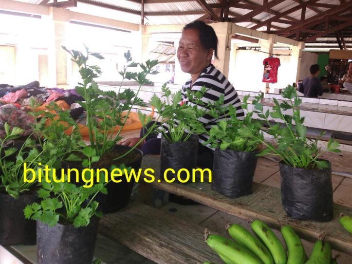 Ana Laganta, pelopor Agribisnis dari Pulau Lembeh