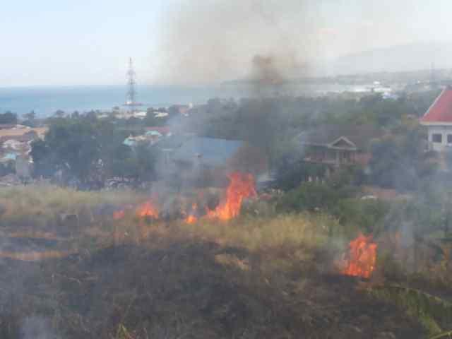 Kebakaran lahan di Kelurahan Wangurer Utara