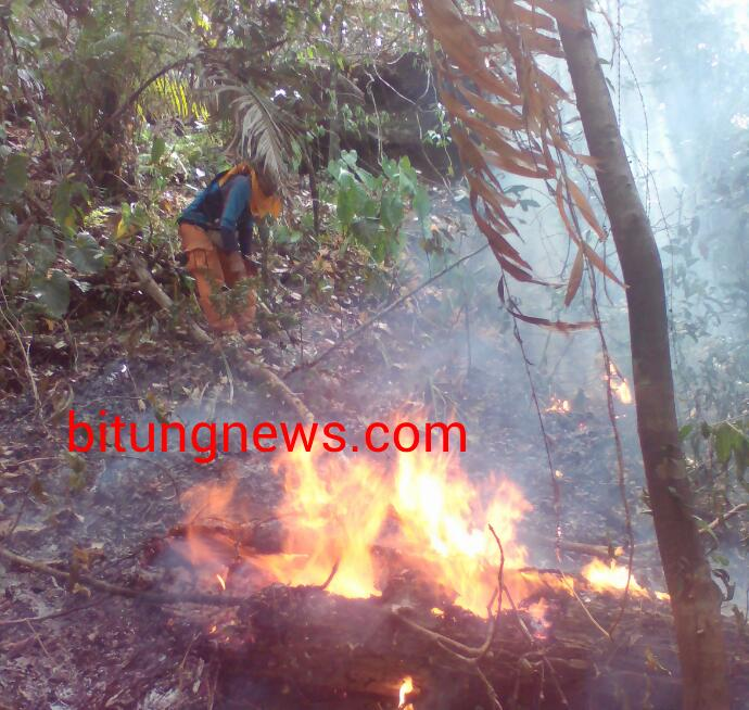 Tim manggala agni BKSDA, lokalisir kebakaran hutan